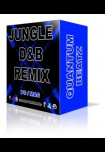Jungle Dnb Remix Quantum Beatz