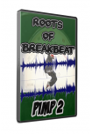 ROOTS OF BREAK BEAT - PIMP 2